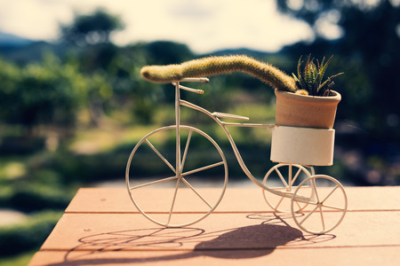 Decorative items for home with a small pot. Stock Photo