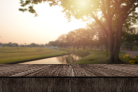 Wooden table and blurry nature of forest in background. Stock Photo