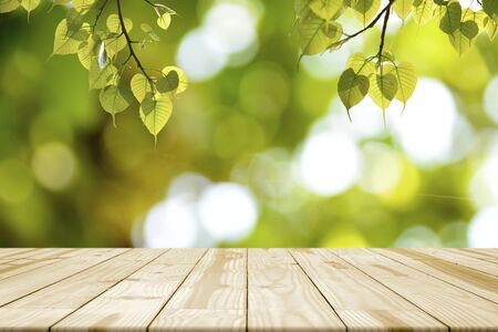 Empty wooden table and Green leaves (Bonhi) hanging for background.