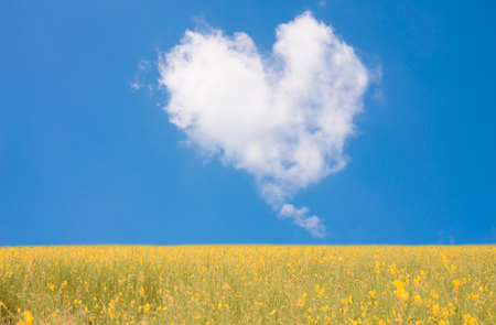 Beautiful nature for background. White heart shape in the sky.