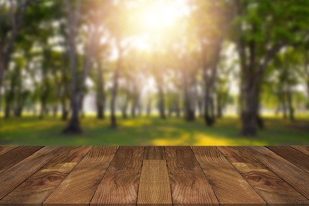 Empty brown wooden table and blurry forest in background.