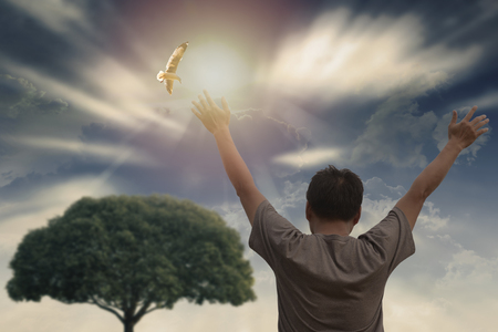 A man raise hands up and beautiful Sky with bird flying.  Freedom and worship concept.