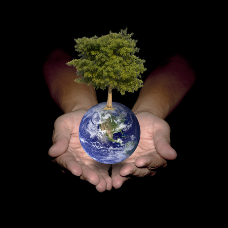 Your hands can help the world to be green. Environment concept. Stock Photo
