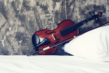 Violin is placed on the bed.