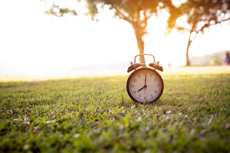 Retro alarm clock placed on green grass in the park. Stock Photo