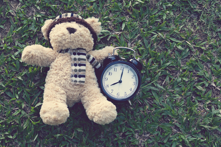Bear doll and Retro alarm clock placed on green grass in the park.