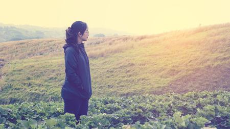Khao Kho Mountain, Phetchabun, Thailand. A woman standing in the strawberry farm. Stock Photo