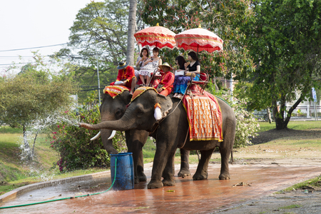 Ayutthaya, Thailand - February 12, 2018 : Asian tourists come to travel at Ayutthaya Historical Park for sitting on elephant. The Elephant became Thailand's National Symbol.