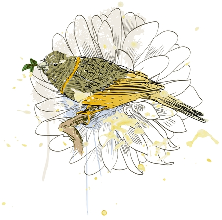 Vector sketch of a bird with flower. Hand drawn illustration