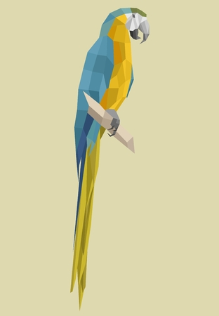 macaw parrot  in low polygon style on a light background