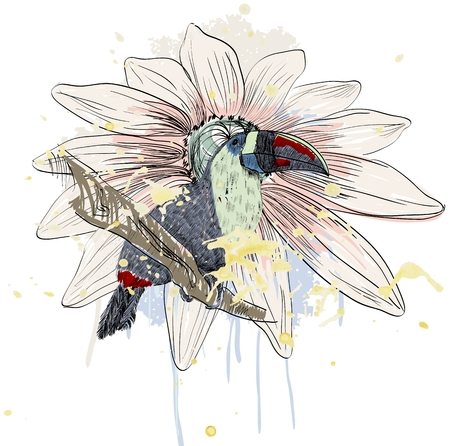 Vector sketch of a parrot with flower. Hand drawn illustration