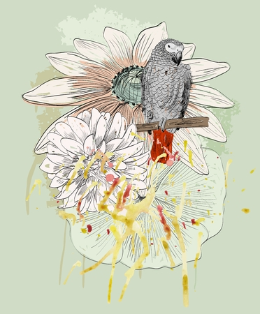 daisy pink: Vector sketch of a parrot with flowers. Hand drawn illustration