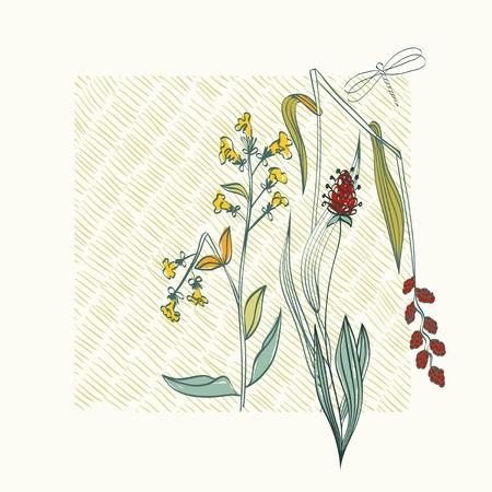 swill: Autumn. Vector floral background. Flower element for design. Illustration