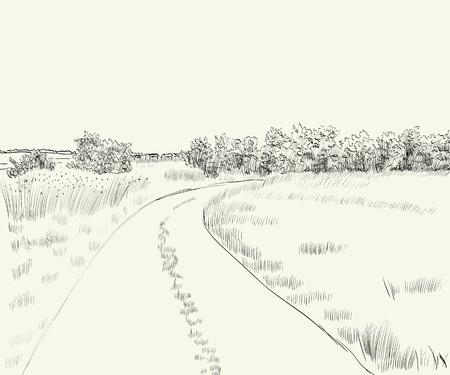 illustrazione vettoriale paesaggio estivo con strada di campagna