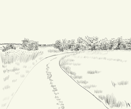country road: vector illustration  summer landscape with country road