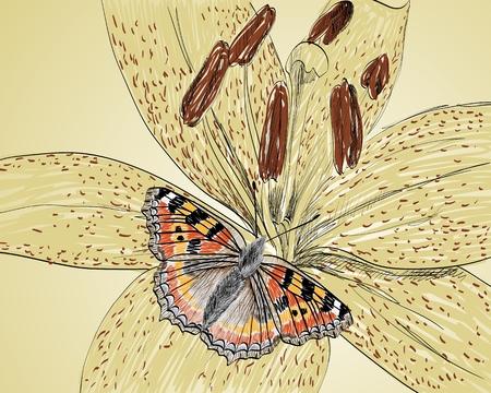 Vecteur croquis de lys avec papillon, peinture Banque d'images - 65252591