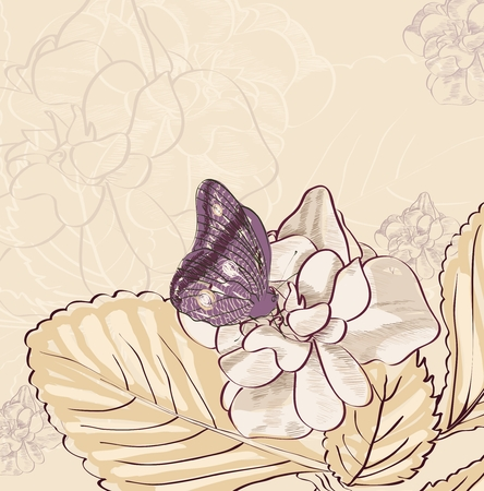butterflies flying: Illustration of beautiful butterflies flying around flower. Illustration