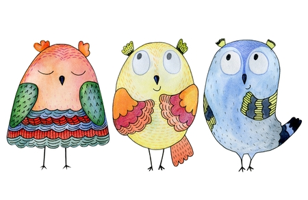 Watercolor funny illustration with owl. Hand drawn bird drawing. Stock Illustration - 73956469
