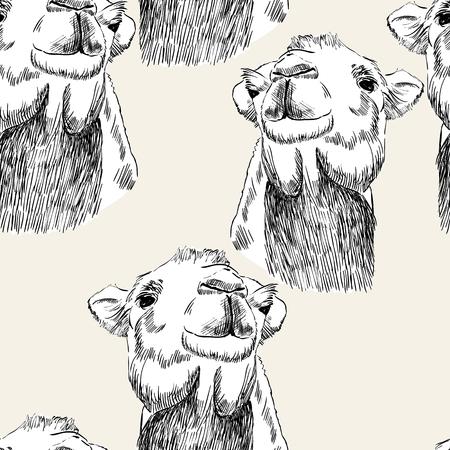 Skizze des Kamels, Kamel nach oben gerichtet Standard-Bild - 87905845