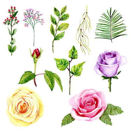 set met rozen.