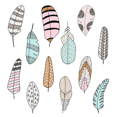 vector hand drawn set of stylized bird feathers
