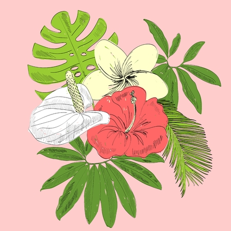 Tropical flowers illustration