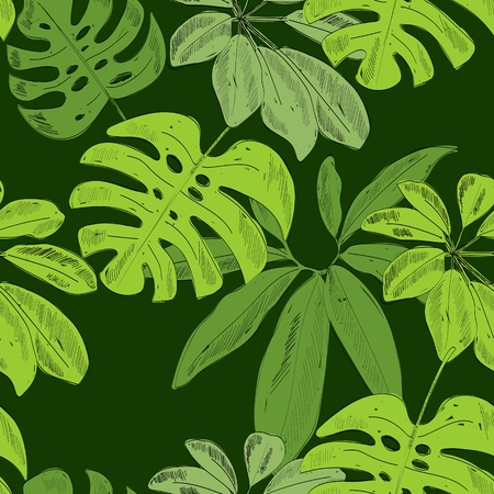 Tropical seamless leaves pattern in green background