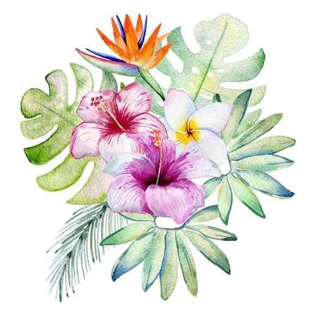 Tropical watercolor illustration Stock Illustration - 102823377