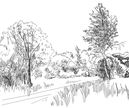 vector summer landscape