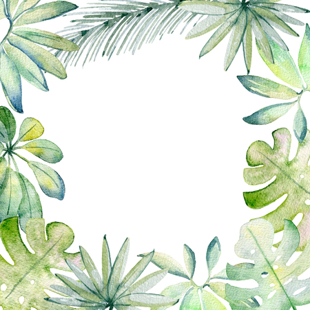 watercolor tropical frame Stock Photo - 104013462