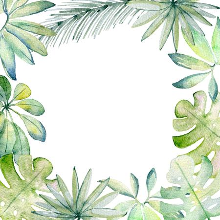 watercolor tropical frame 版權商用圖片 - 104013462
