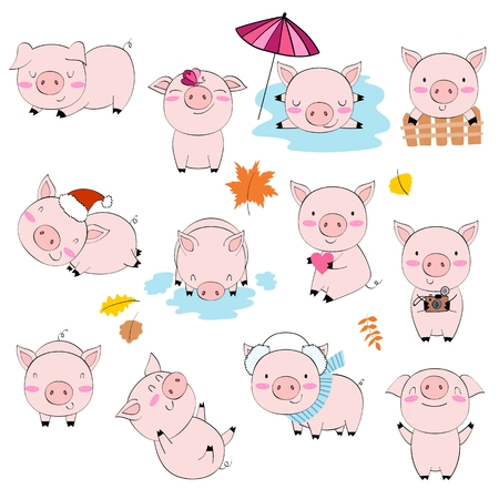 Vector cartoon pigs.