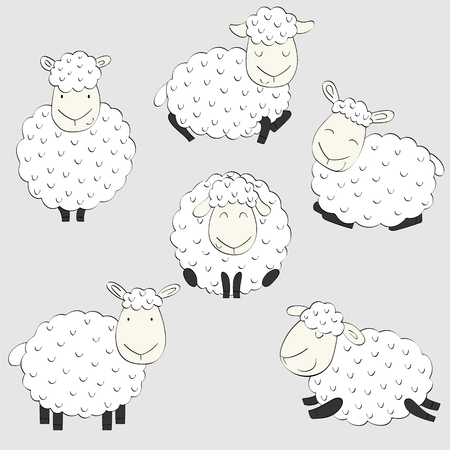 Vector set of cartoon sheeps in various poses. Illustration