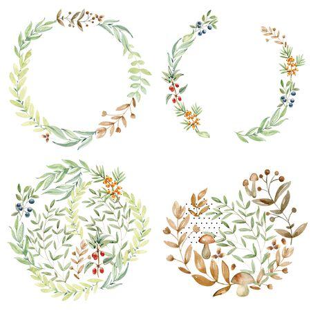 watercolor arrangements herbs.