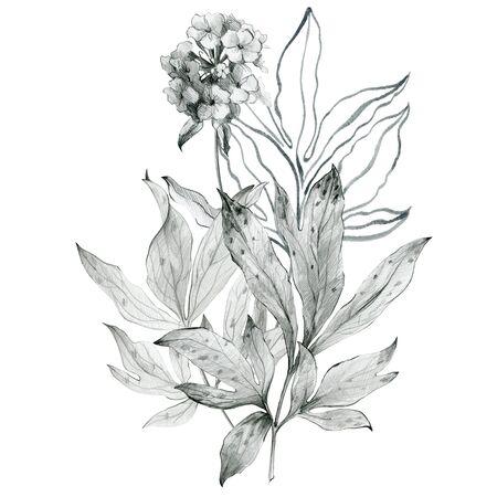 Floral sketch bouquet