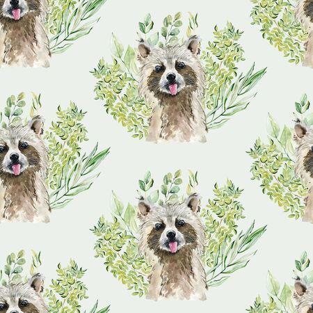 Raccoon watercolor illustration