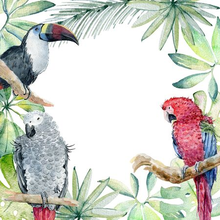 Tropical watercolor frame Stock fotó