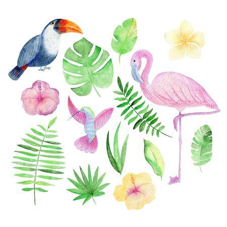 Tropical watercolor arrangement with birds and flowers. Stock fotó