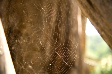 Small web close-up. Background: part of wooden building. photo