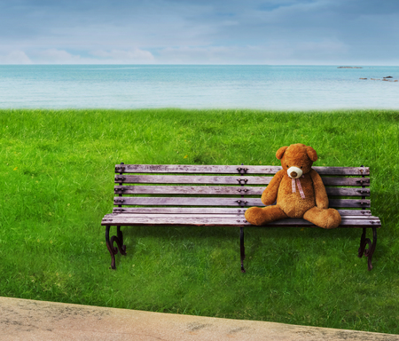 Teddy bear sat on a wooden bench lonely.
