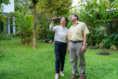 Parejas de ancianos asiáticos caminan dentro del patio trasero para ver la naturaleza.