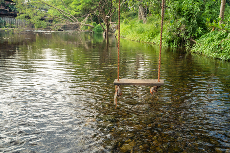 The wooden swing is hung on the branches above the river in a calm and relaxing atmosphere.