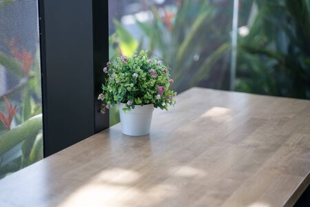 Flower pots are used to decorate the counter on the windows that are glass. Stok Fotoğraf