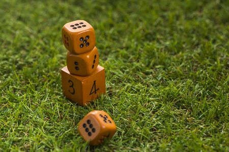 Dice cube on grass background, Macro, Sensitive focus, This dice by handmade Stock Photo