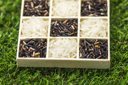 Jasmine rice black rice and white rice in a little box on grass, Sensitive Focus