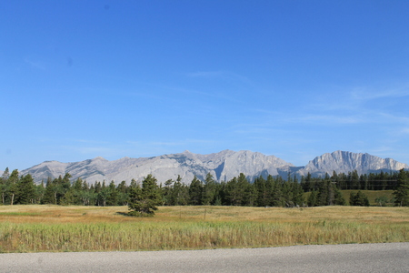 parkway: Bow Valley Parkway scene