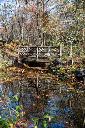 Rustic Bridges in the Ramble in Central Park, New York City
