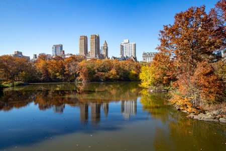 The colorful trees on the shore of the Lake in Central Park, New York City