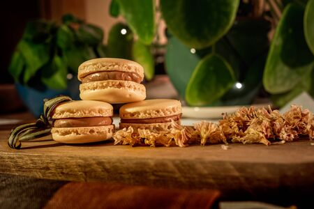 Tasty sweet macaroon cookies on wooden display