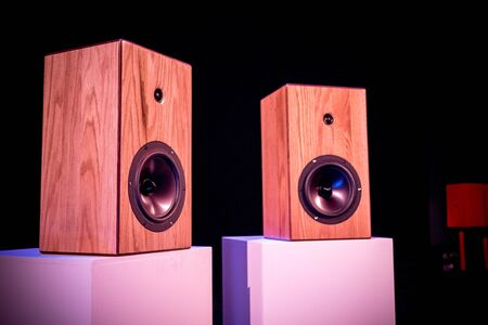 Custom Made Hi fidelity Studio Loud Speakers